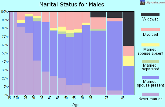Zip code 99801 marital status for males