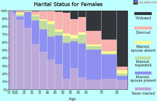 Zip code 01040 marital status for females