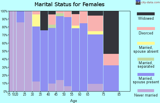 Zip code 01740 marital status for females