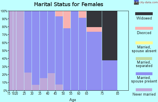 Zip code 03456 marital status for females