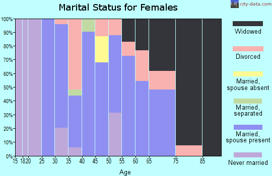 Zip code 04027 marital status for females