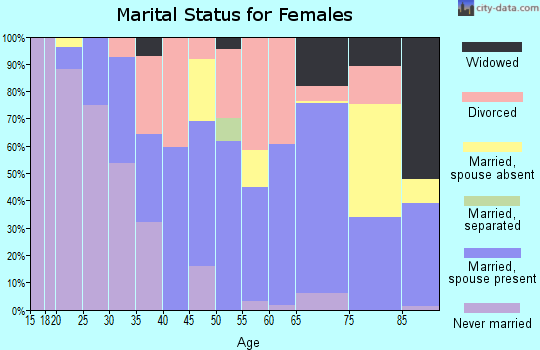 Zip code 04037 marital status for females