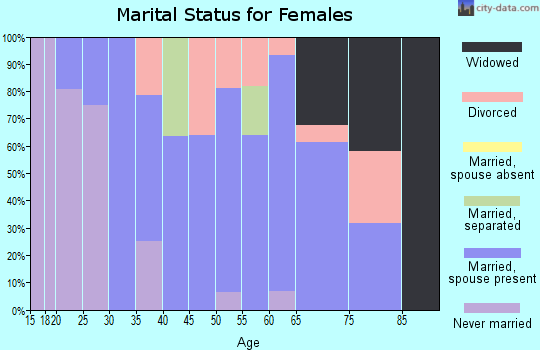 Zip code 04051 marital status for females