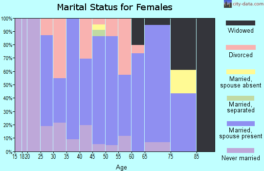 Zip code 04055 marital status for females