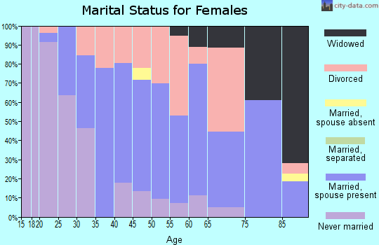 Zip code 04083 marital status for females