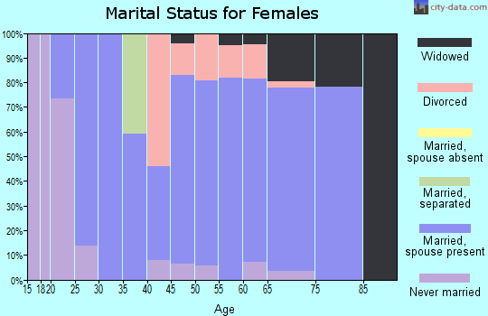 Zip code 04095 marital status for females