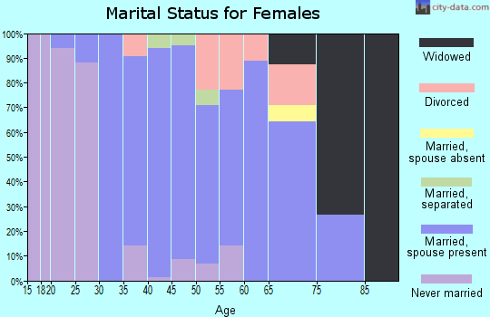 Zip code 04097 marital status for females