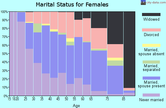 Zip code 04106 marital status for females