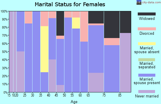 Zip code 04221 marital status for females