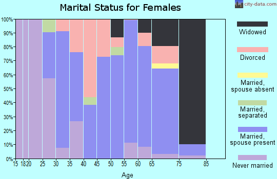 Zip code 04252 marital status for females