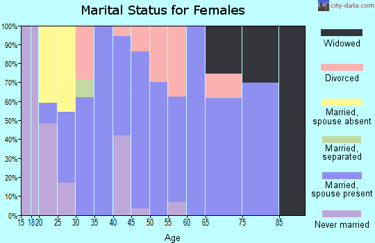 Zip code 04260 marital status for females