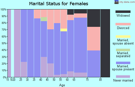 Zip code 04349 marital status for females
