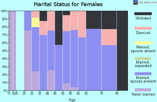 Zip code 04464 marital status for females