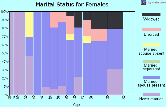 Zip code 06063 marital status for females