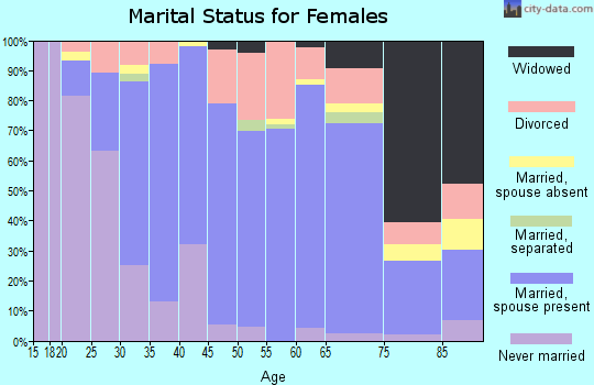 Zip code 06385 marital status for females
