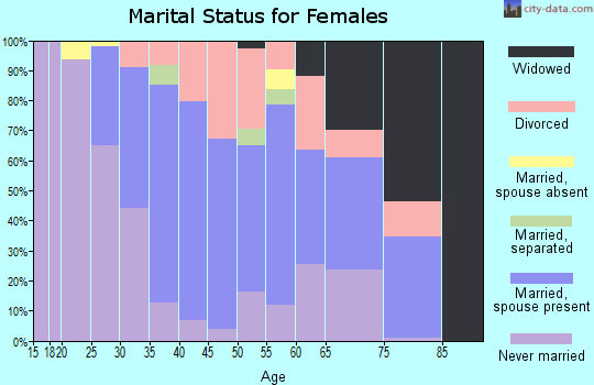 Zip code 06907 marital status for females