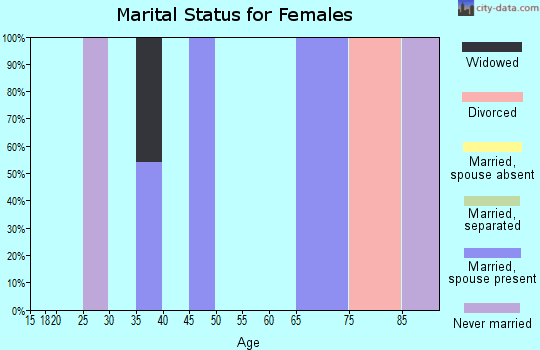 Zip code 08528 marital status for females