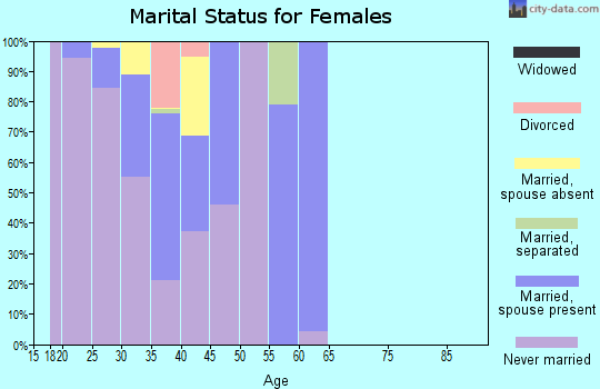 Zip code 10005 marital status for females