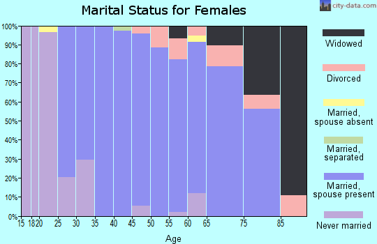 Zip code 11792 marital status for females