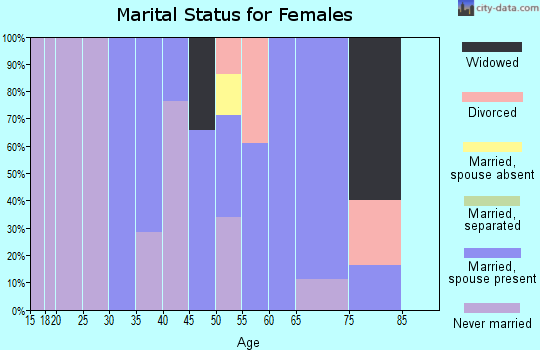 Zip code 11941 marital status for females