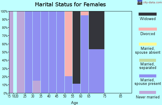 Zip code 12153 marital status for females
