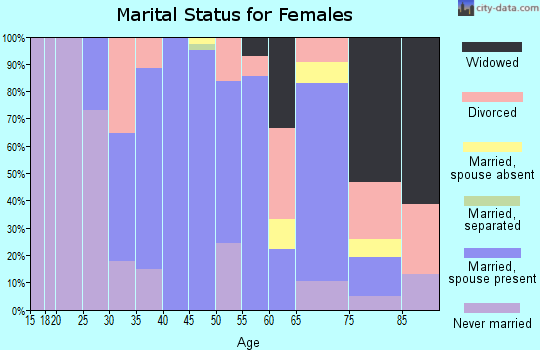 Zip code 12531 marital status for females