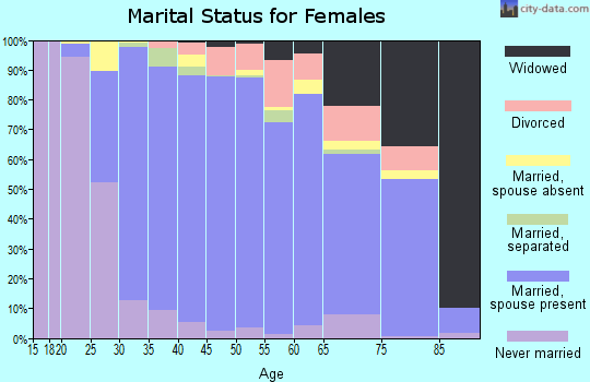 Zip code 12533 marital status for females