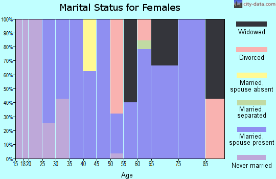Zip code 12819 marital status for females