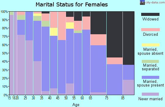 Zip code 13040 marital status for females