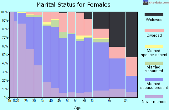Zip code 13090 marital status for females