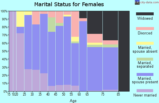 Zip code 13101 marital status for females