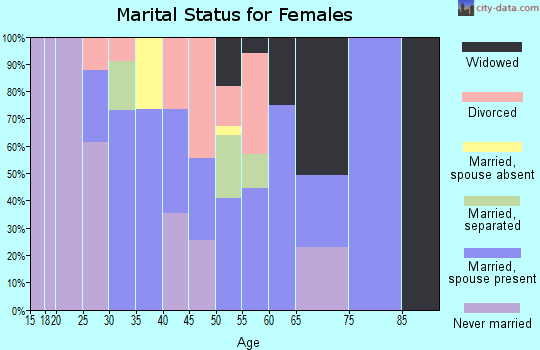 Zip code 13120 marital status for females