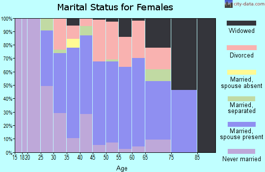Zip code 13135 marital status for females