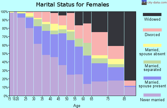 Zip code 13204 marital status for females