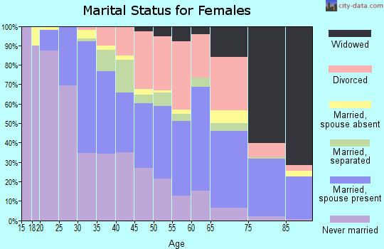 Zip code 13206 marital status for females