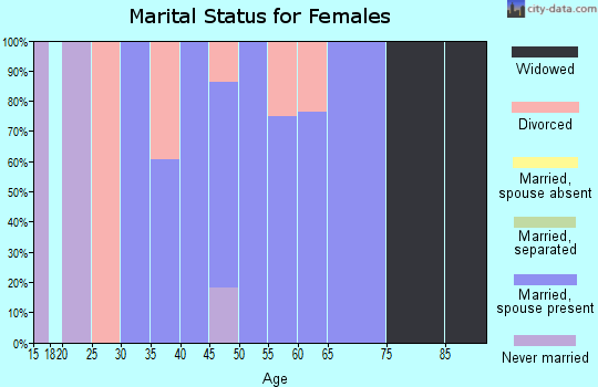 Zip code 13314 marital status for females