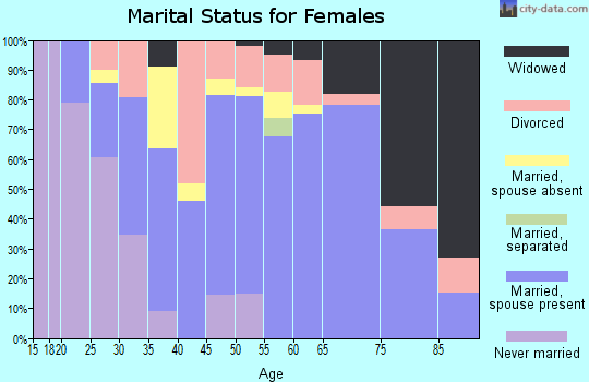 Zip code 13320 marital status for females
