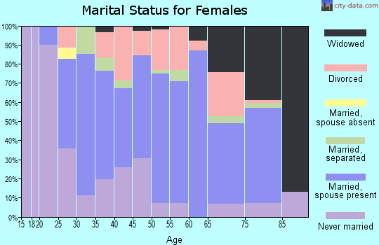 Zip code 13329 marital status for females