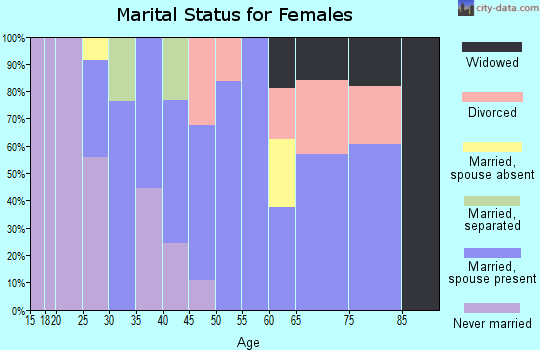 Zip code 13335 marital status for females