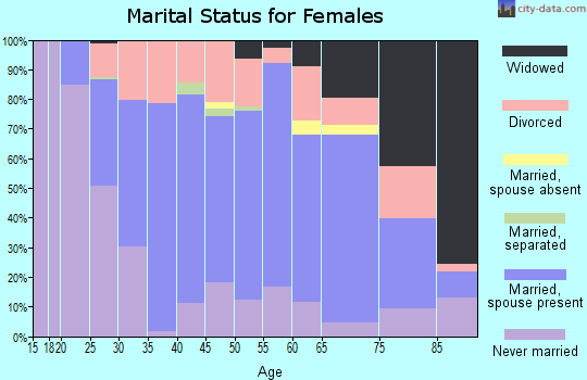 Zip code 13340 marital status for females
