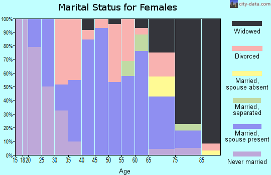 Zip code 13428 marital status for females