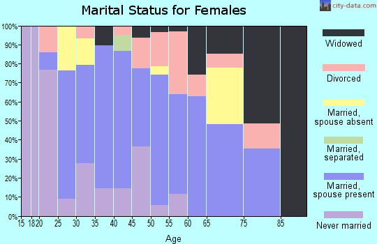 Zip code 13433 marital status for females