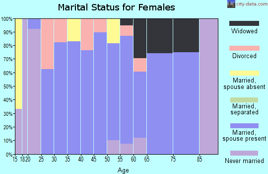 Zip code 13485 marital status for females