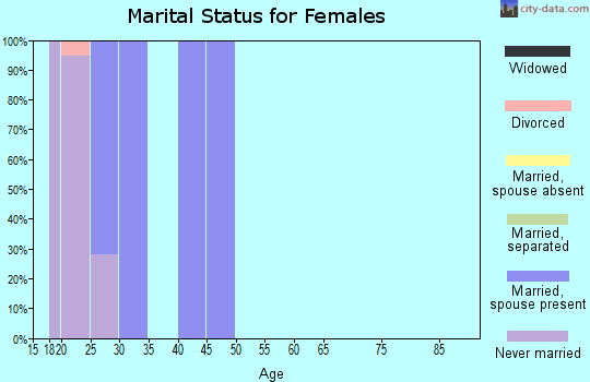 Zip code 13602 marital status for females