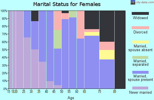 Zip code 13746 marital status for females