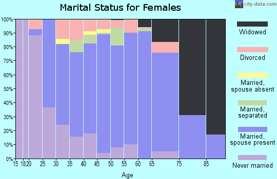 Zip code 13803 marital status for females