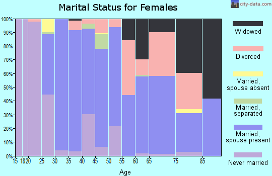 Zip code 13811 marital status for females