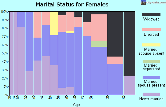 Zip code 13833 marital status for females