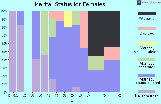Zip code 13841 marital status for females