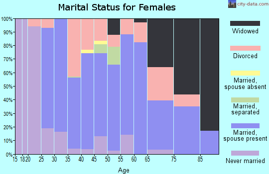 Zip code 13849 marital status for females